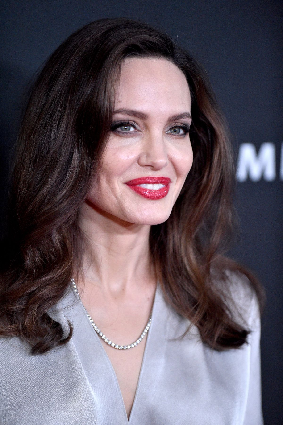 Angelina Jolie Movies 2017