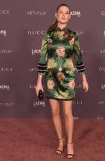 BEHATI PRINSLOO at 2017 LACMA Art + Film Gala in Los Angeles 11/04/2017