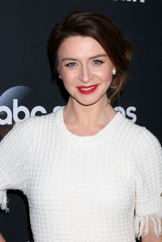 CATERINA SCORSONE at 300th Grey's Anatomy Episode Celebration in Hollywood 11/04/2017