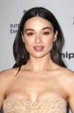 CRYSTAL REED at 2017 International Emmy Awards in New York 11/20/2017