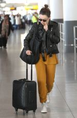 DAISY RIDLEY at JFK Airport in New York 11/27/2017