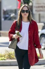 DAKOTA JOHNSON Out and About in Los Angeles 11/08/2017