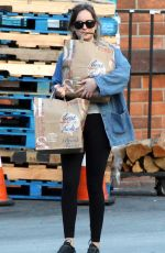 DAKOTA JOHNSON Out Shopping in Los Angeles 11/07/2017