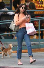 DAKOTA JOHSNON Shopping at Melrose Avenue in West Hollywood 11/12/2017