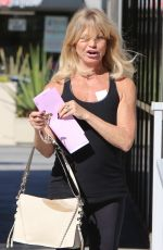 GOLDIE HAWN Out and About in Santa Monica 11/08/2017