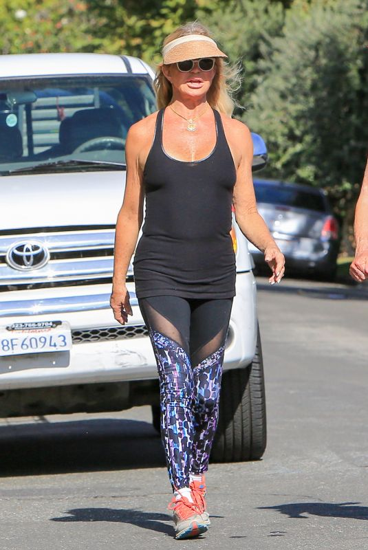 GOLDIE HAWN Out Hikking in Los Angeles 11/21/2017