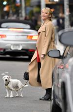 HALEY BENNETT Out with Her Dog in New York 11/01/2017