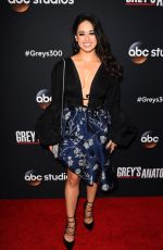 JEANINE MASON at 300th Grey's Anatomy Episode Celebration in Hollywood 11/04/2017