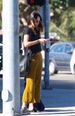 JORDANA BREWSTER Out for Lunch in Los Angeles 11/22/2017