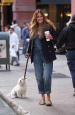 KELLY BENSIMON Out with Her Dog in New York 11/09/2017