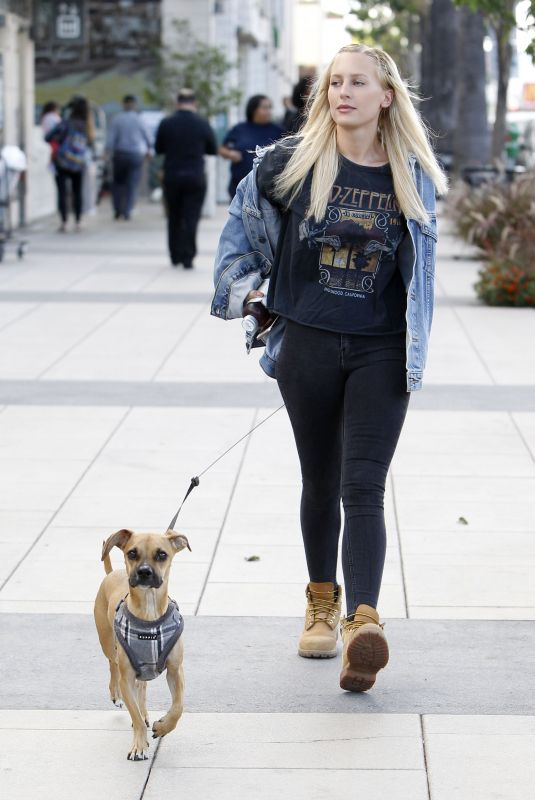 LORRAINE GILLES Walks Her Dog in Los Angeles 11/09/2017