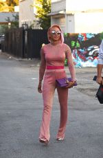 MELANIE BROWN Shows off New Pink Hair Out Shopping in Los Angeles 11/15/2017