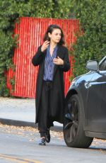 MILA KUNIS Out in Los Angeles 11/29/2017