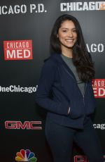 MIRANDA RAE MAYO at 3rd Annual NBC One Chicago Party in Chicago 10/31/2017
