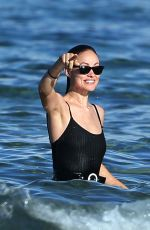 OLIVIA WILDE in Swimsuit at a Beach in Hawaii 11/26/2017