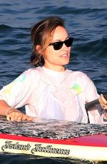 OLIVIA WILDE in Swimsuit on the Beach in Hawaii 11/23/2017