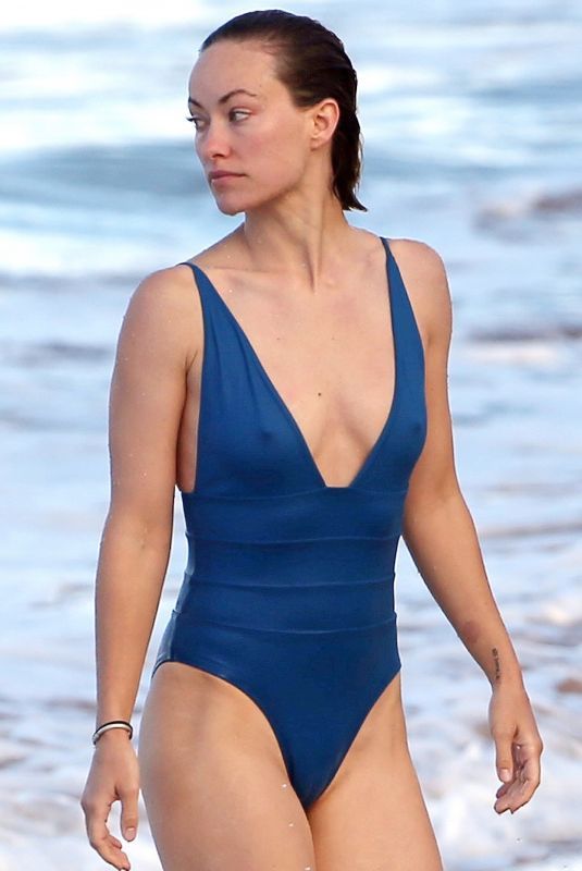 OLIVIA WILDE in Swimsuit on the Beach in Hawaii 11/23/2017
