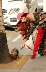 PHOEBE PRICE Out with Her Dog in Los Angeles 11/15/2017