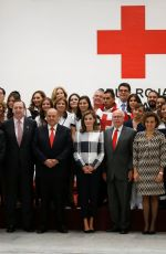 QUEEN LETIZIA OF SPAIN at Red Cross Building in Mexico City 11/13/2017