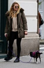 RACHEL HILBERT Out with Her Dog in New York 11/14/2017