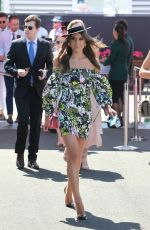 REBECCA HARDING at 2017 Stakes Day Races in Melbourne 11/11/2017