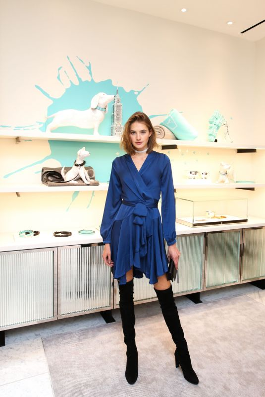 SANNE VLOET at Tiffany & Co. Collection Launch in New York 11/08/2017