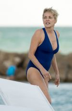 SHARON STONE in Swimsuit at a Beach in Miami 11/03/2017