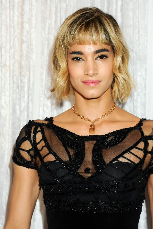 SOFIA BOUTELLA at Fred Hollows Foundation Inaugural Fundraising Gala in Los Angeles 11/15/2017