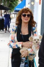 SUSAN SARANDON Out and About in Studio City 10/30/2017