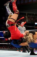 WWE - Survivor Series 2017