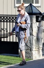 AMY ADAMS Out and About in Los Angeles 12/11/2017
