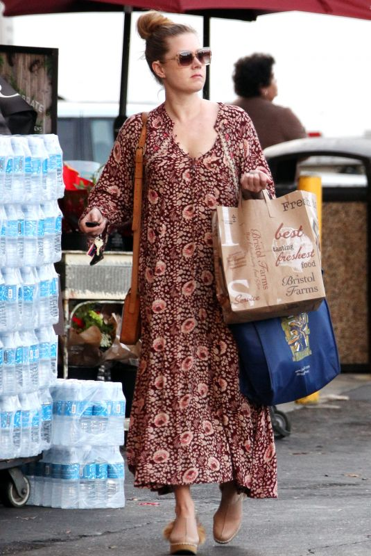 AMY ADAMS Out Shopping in West Hollywood 12/01/2017