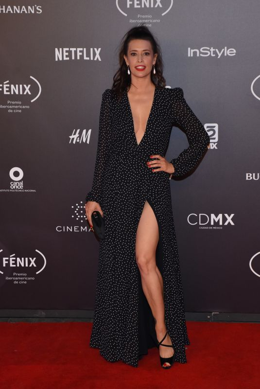 ANGIE CEPADA at Fenix Film Awards in Mexico City 12/06/2017