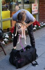 ASHLEY GREENE Out with Her Dog in Beverly HIlls 12/14/2017