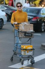 ASHLEY GREENE Shopping at Bristol Farms in Beverly Hills 12/19/2017