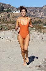 BLANCA BLANCO in Swimsuit on the Beach in Malibu 12/20/2017