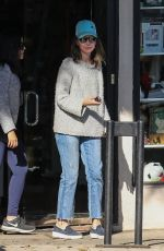CALISTA FLOCKHART Out woth Her Dogs in Brentwood 12/16/2017