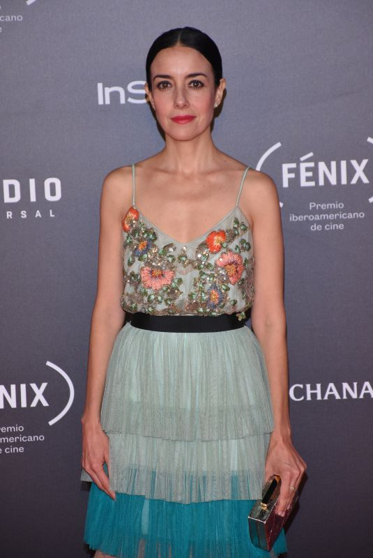 CECILIA SUAREZ at Fenix Film Awards in Mexico City 12/06/2017