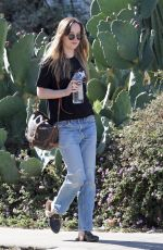 DAKOTA JOHNSON Out and About in Hollywood 12/07/2017