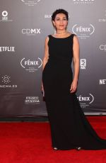 DOLORES HEREDIA at Fenix Film Awards in Mexico City 12/06/2017