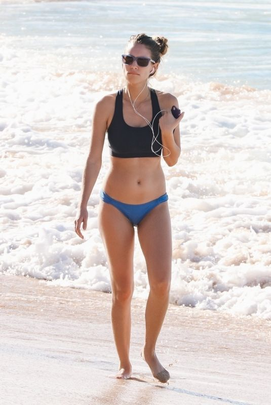 DYLAN PENN in Bikini at a Beach in Hawaii 12/28/2017