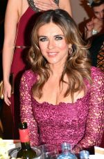 ELIZABETH HURLEY at The Look Woman of the Year Awards Gala in Vienna 11/29/2017
