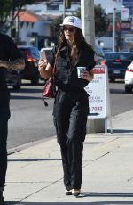 EMILY RATAJKOWSKI Out for Lunch in Los Angeles 12/03/2017