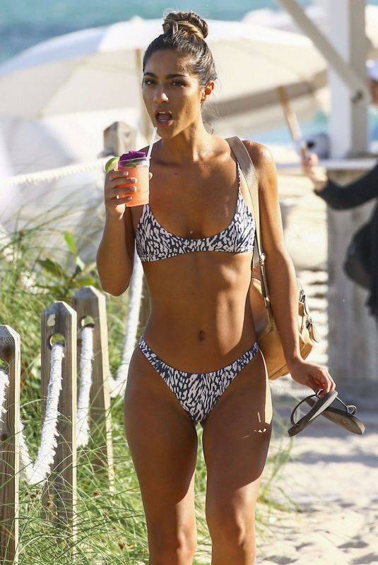 ERIKA WHEATON in Bikini at a Beach in Miami 12/05/2017