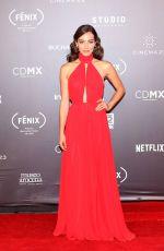 ESEMRALDA PIMENTEL at Fenix Film Awards in Mexico City 12/06/2017