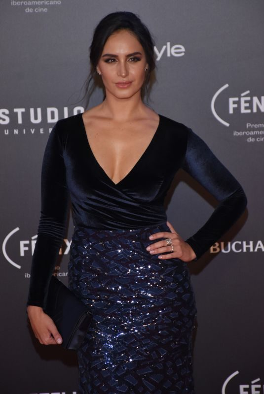 FERNANDA URREJOLA at Fenix Film Awards in Mexico City 12/06/2017
