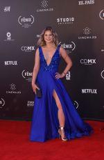 IGNACIA ALLAMAND at Fenix Film Awards in Mexico City 12/06/2017