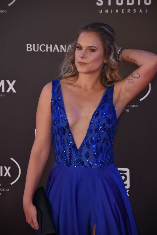 IGNACIA ALLAMAND at Fenix Film Awards in Mexico City 12/06/2017
