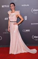 MARIBEL VERDU at Fenix Film Awards in Mexico City 12/06/2017