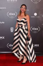 MONICA HUGARTE at Fenix Film Awards in Mexico City 12/06/2017